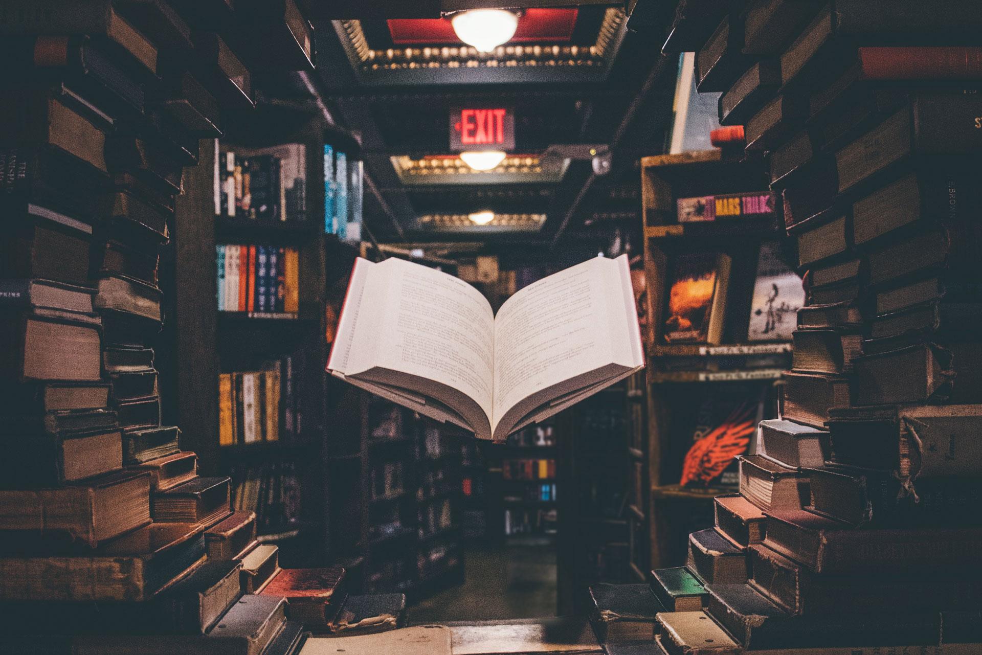 Agenzia letteraria maestri e margherite libri che fanno volare la fantasia