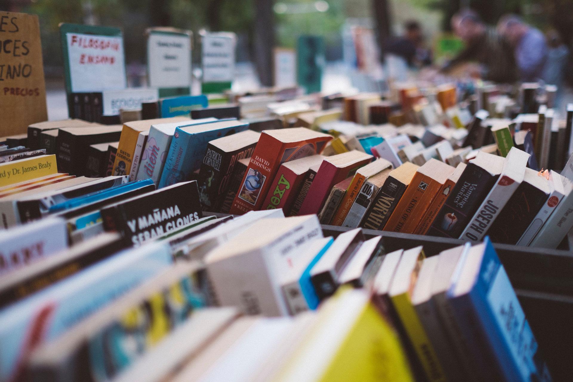 Agenzia letteraria maestri e margherite servizi